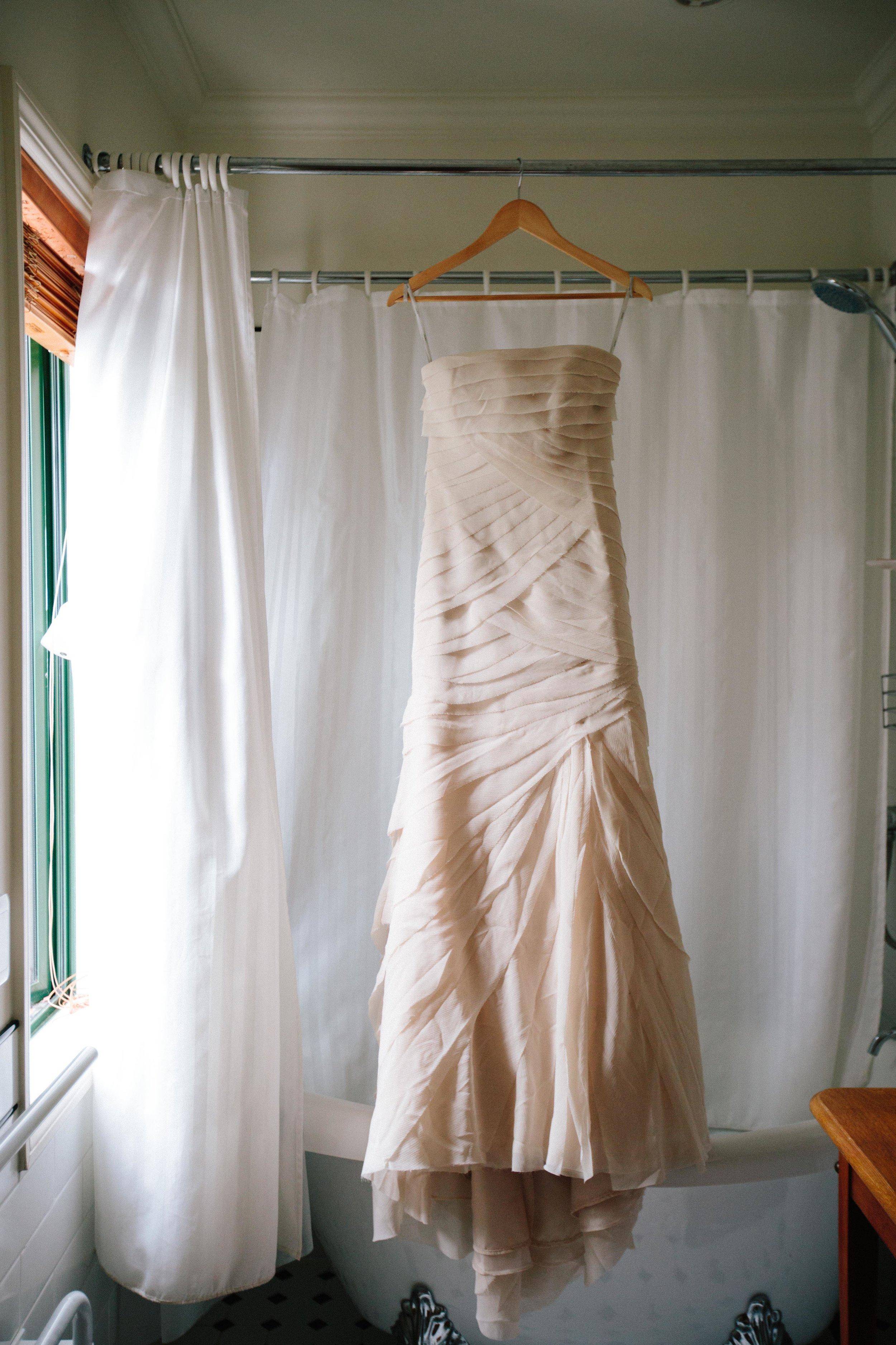 Vera Wang-Wedding-Dress-Blush.jpg