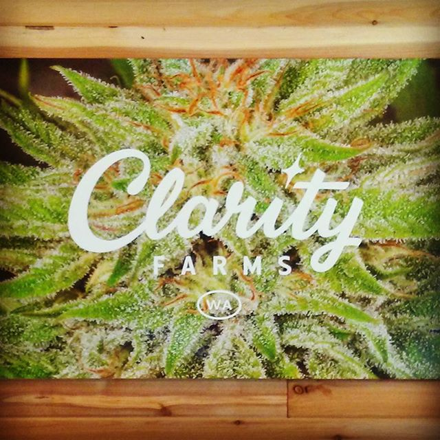 Hope everyone out there in Instagramland is having an incredible day! ✌  #producer #processor #i502 #finest #quality #sungrown #cannabis #clarityfarms #campfirebuds #co2oil #vape  #cannabiscommunity