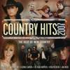 CountryHits2007.jpg