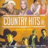 CountryHits2009v2.jpg