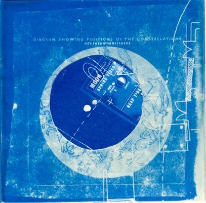 Eileen White | cyanotype | Artist in Residence | Mottisfont, Hampshire