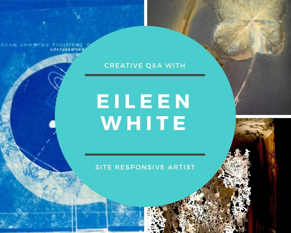 Eileen White | Site Responsive Artist, Hampshire, UK