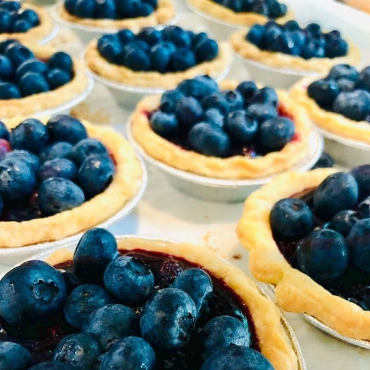 Maine - Hello Good Pie Bakery and Gourmet Kitchen, Belgrade LakesBlueberries and Maine go hand in hand, so expect to find some blueberry pie at Hello, Good Pie in Belgrade Lakes. Their pies are made from scratch, including the fruit fillings, curds and caramel. All this berry talk is giving us an urge to bake up some tasty blueberry treats!Photo courtesy @HELLOGOODPIECO/INSTAGRAM