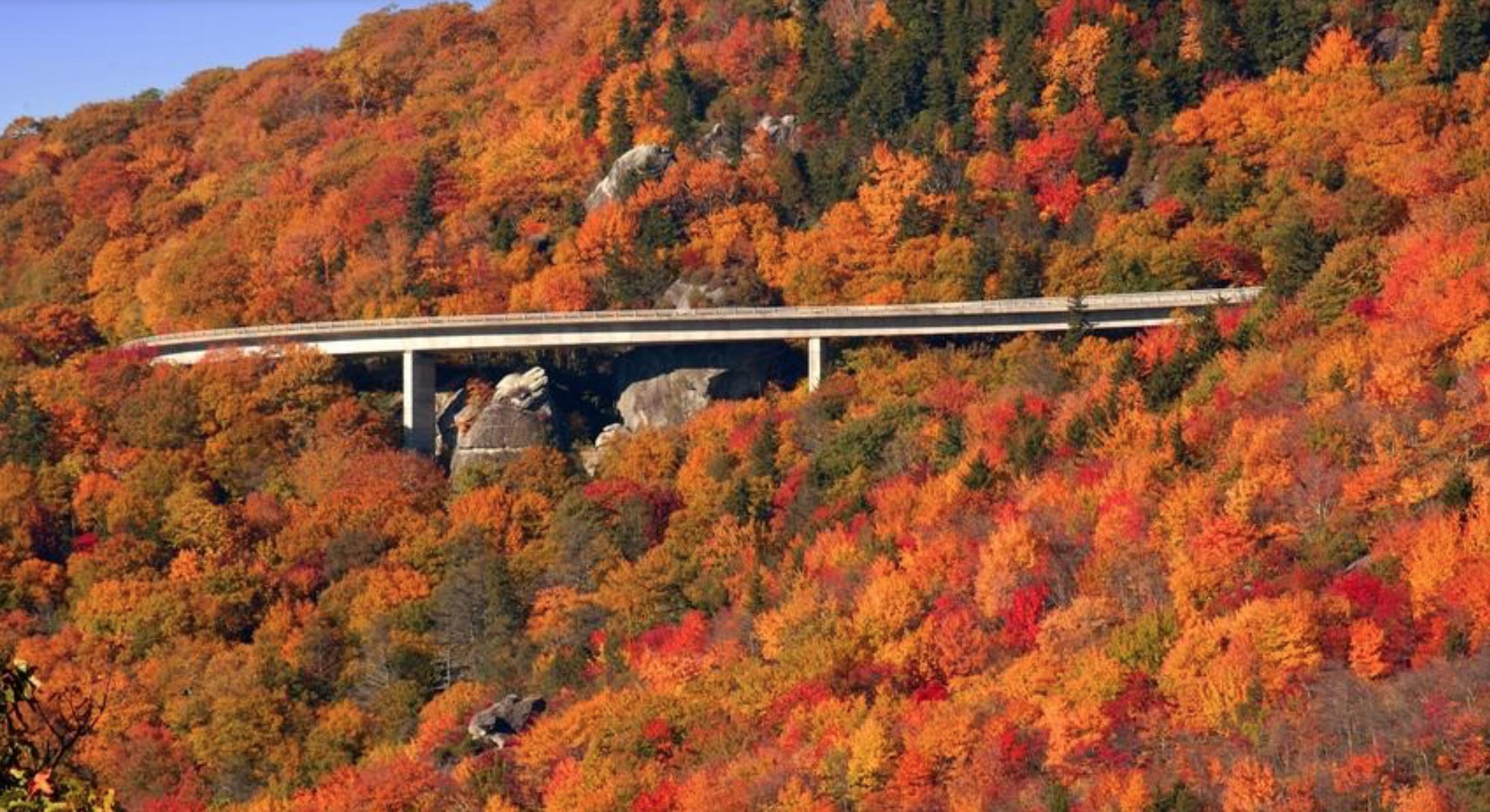 Blue Ridge Parkway. - (NC Division of Tourism/Chicago Tribune/MCT)
