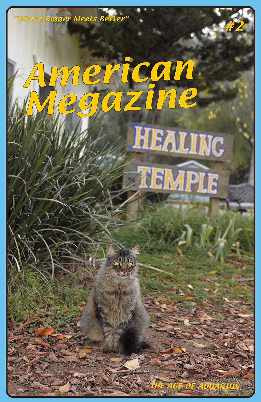American Megazine 1 & 2, 2013