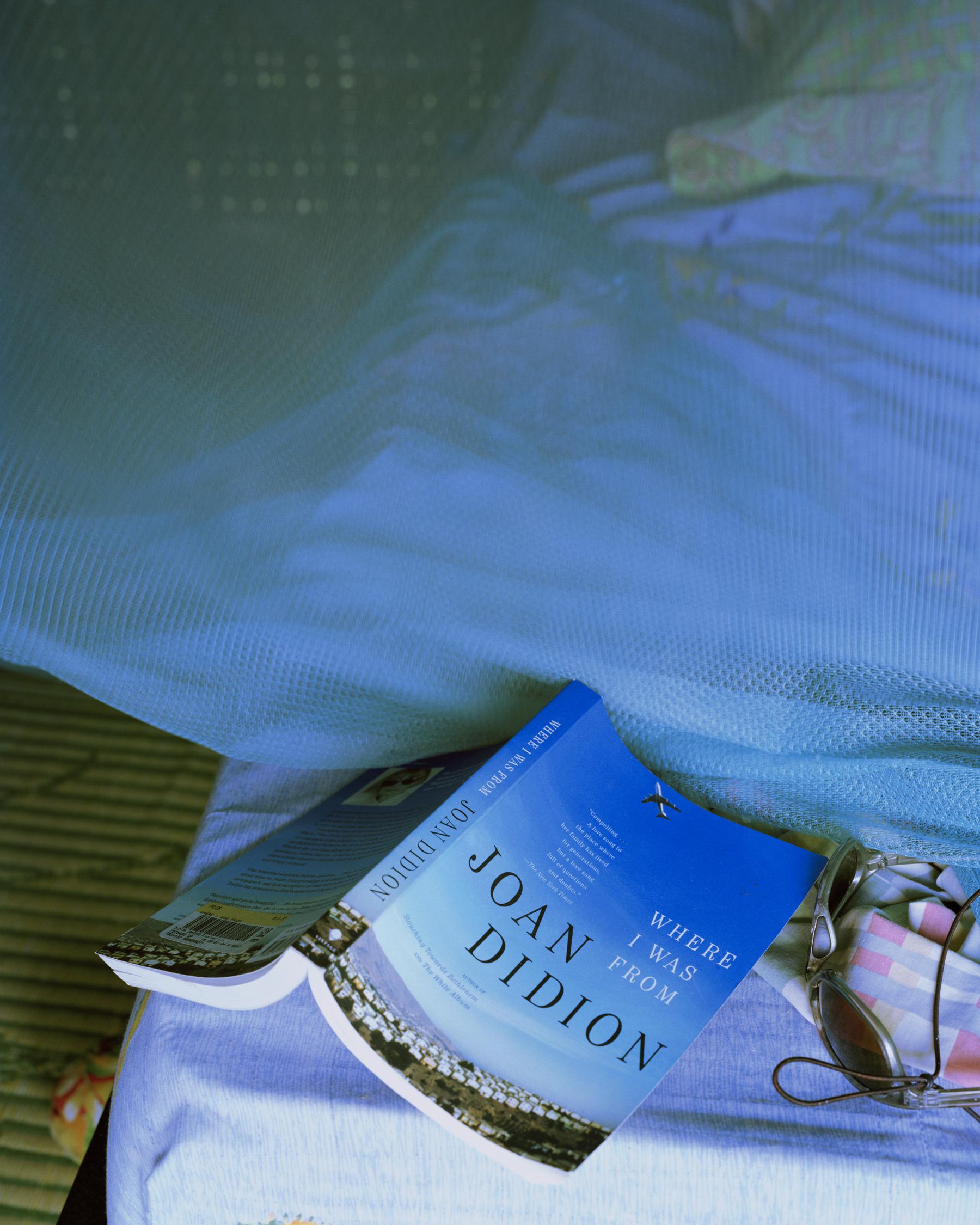 Didion.jpg