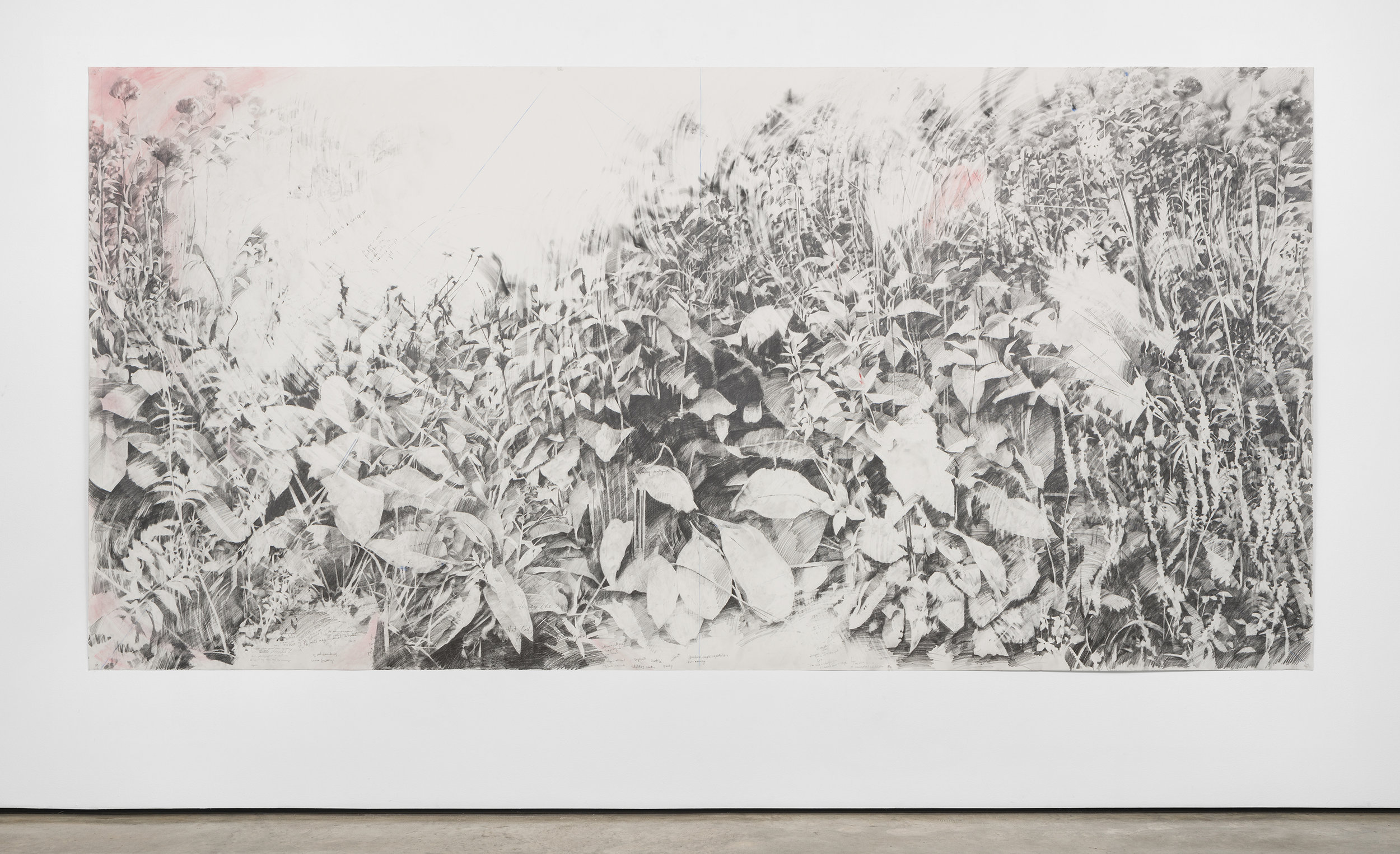 Void #1,  2019, graphite and pigment on paper, 6 x 12 feet - Image by Colin Doyle
