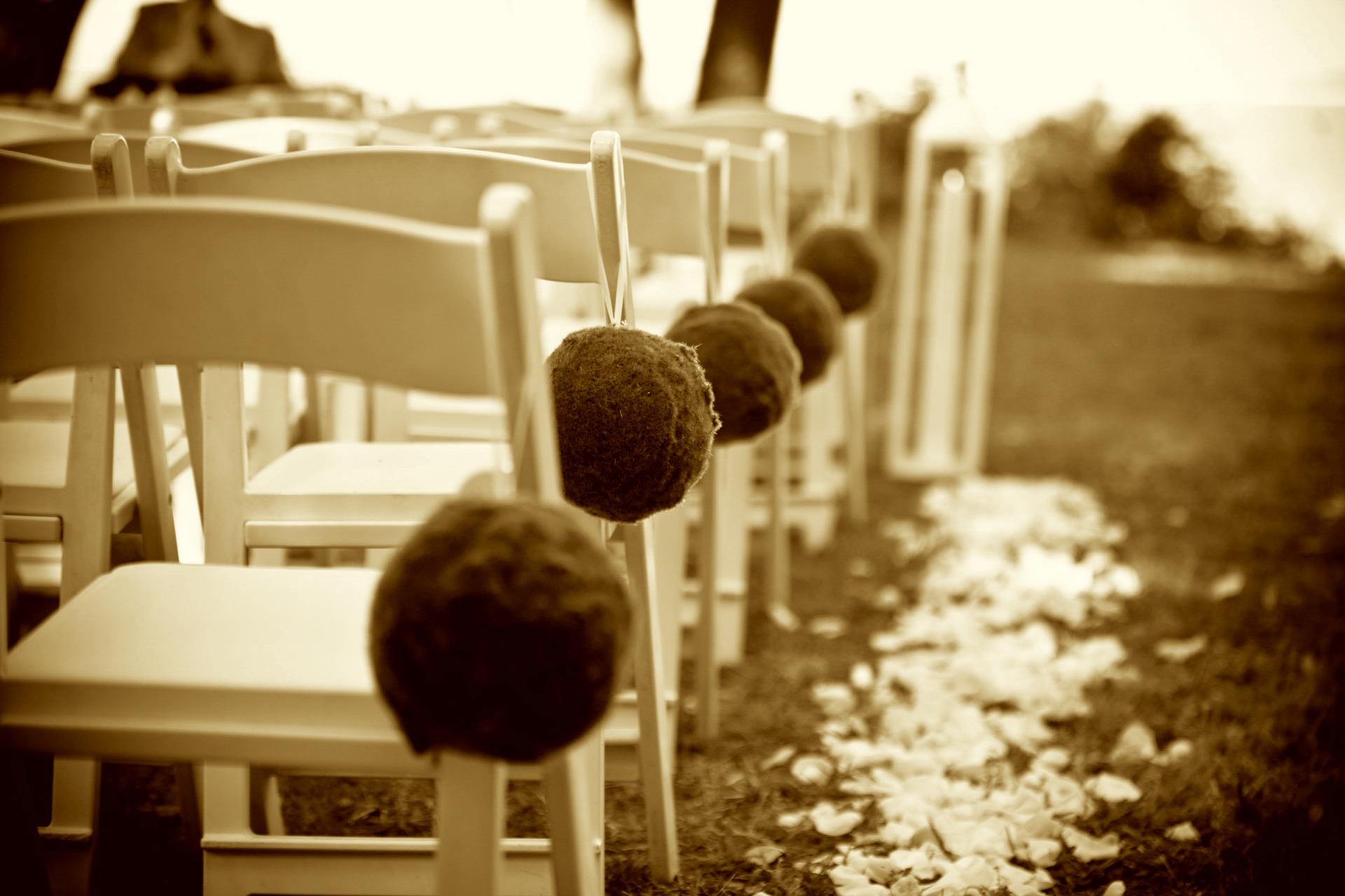 wedding-349676_19202.jpg