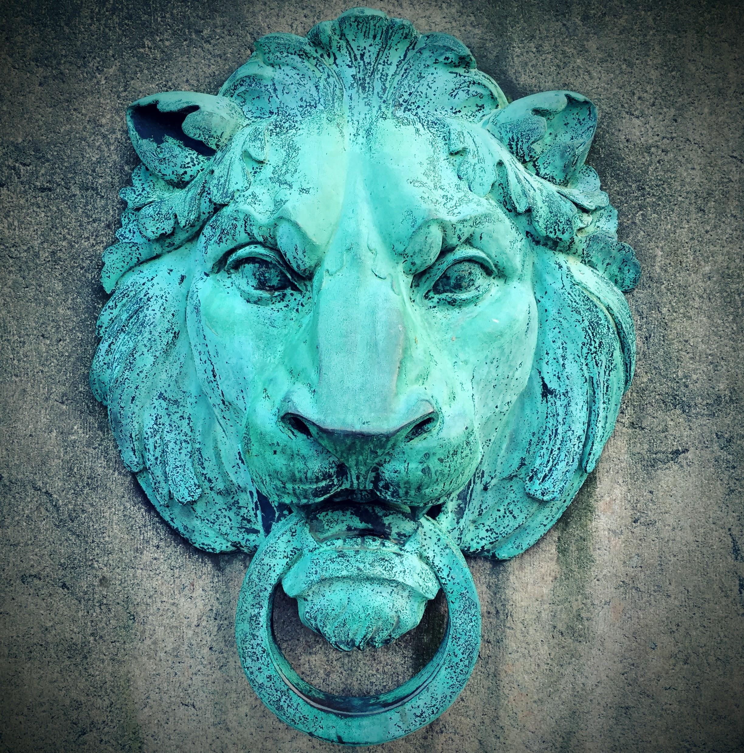 columbia_lion 2.jpg
