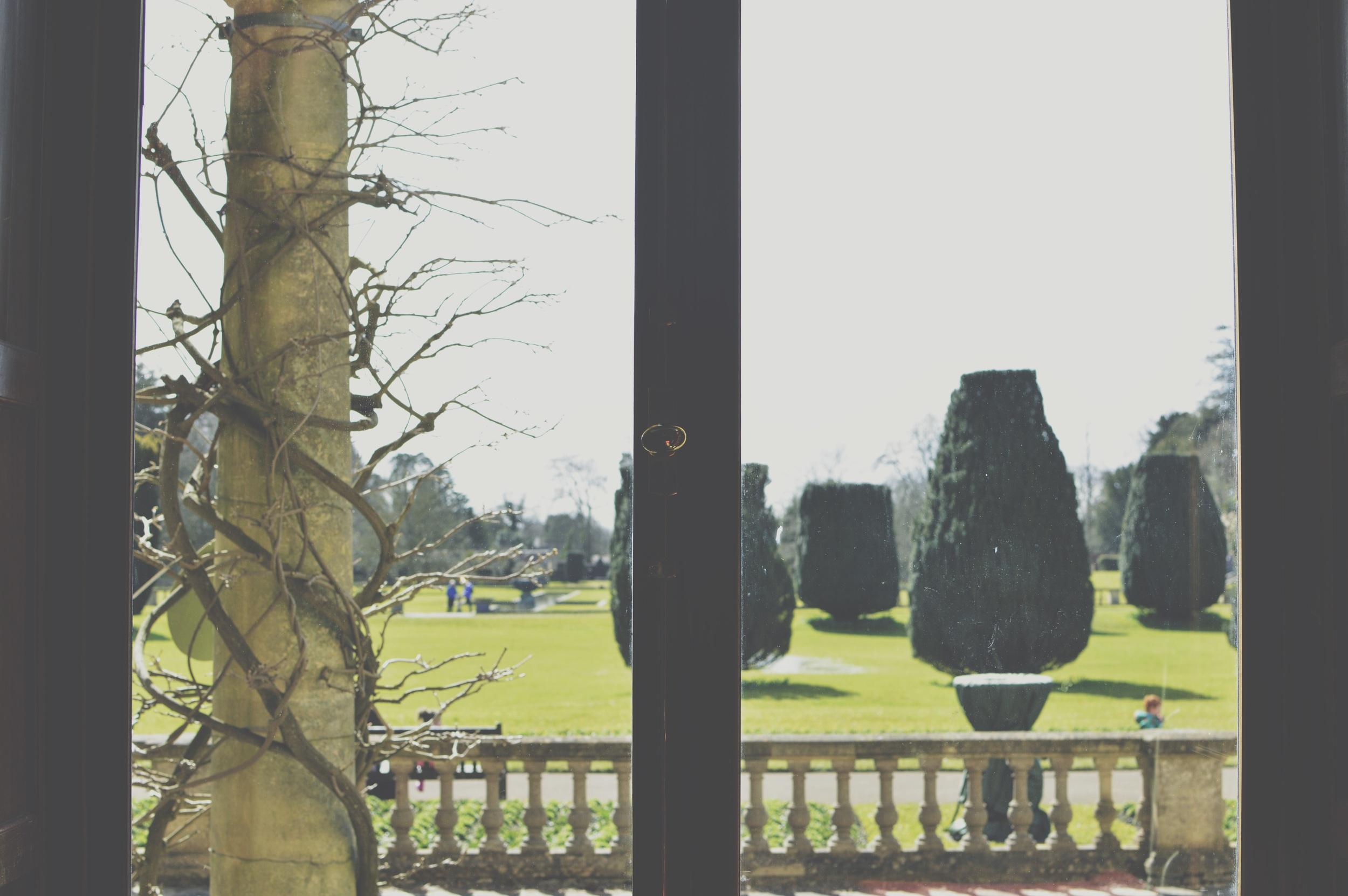 A pretty window view.