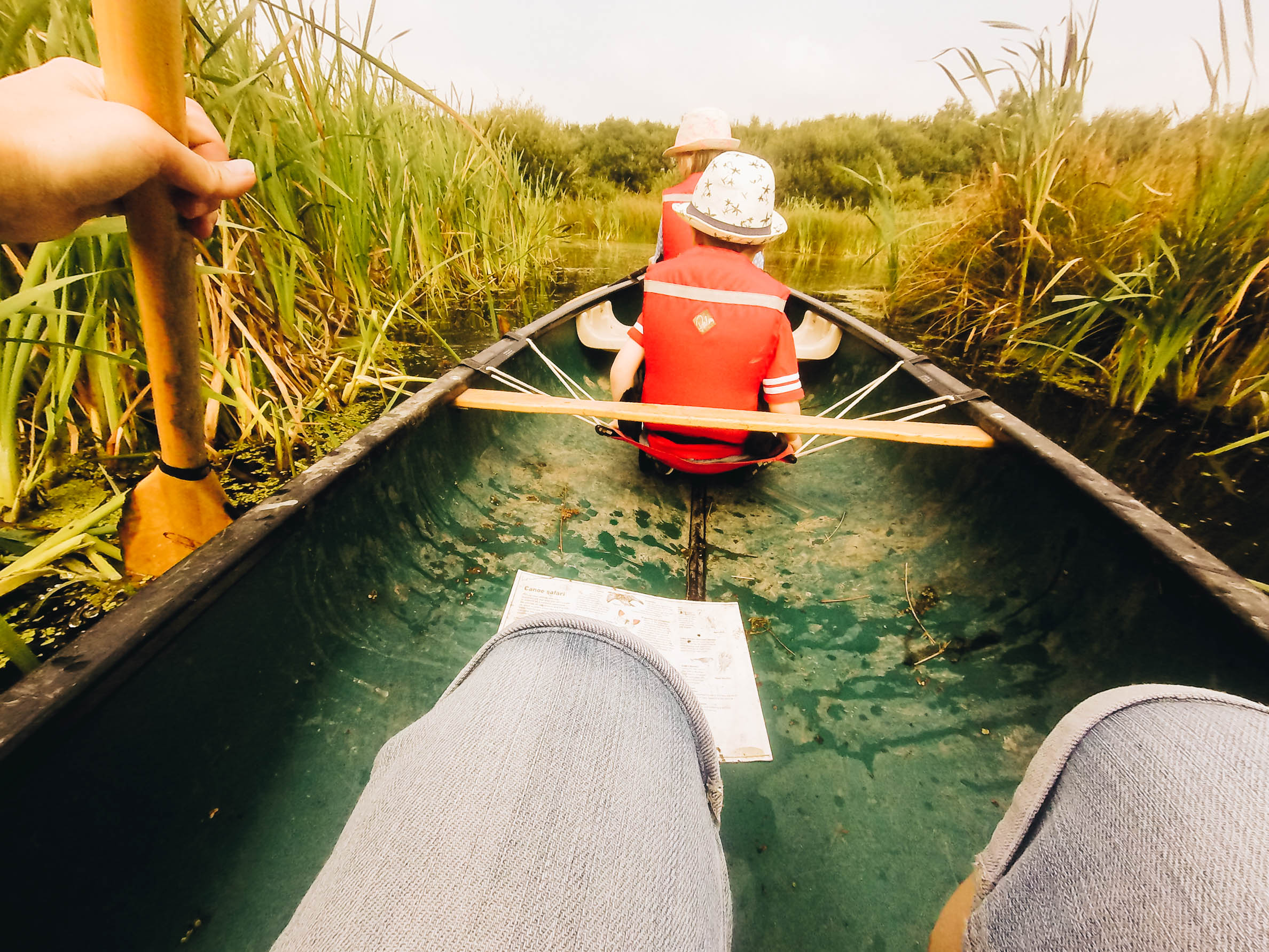 Canoeing. (Taken with my Go Pro)