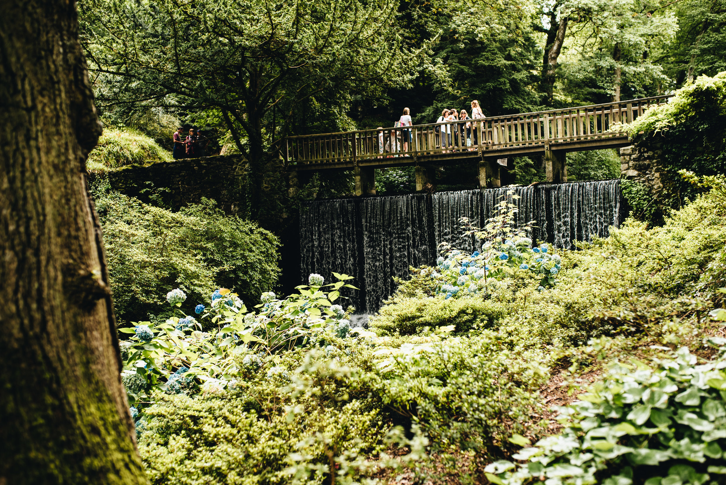 A holiday in North Wales - Bodnant Gardens
