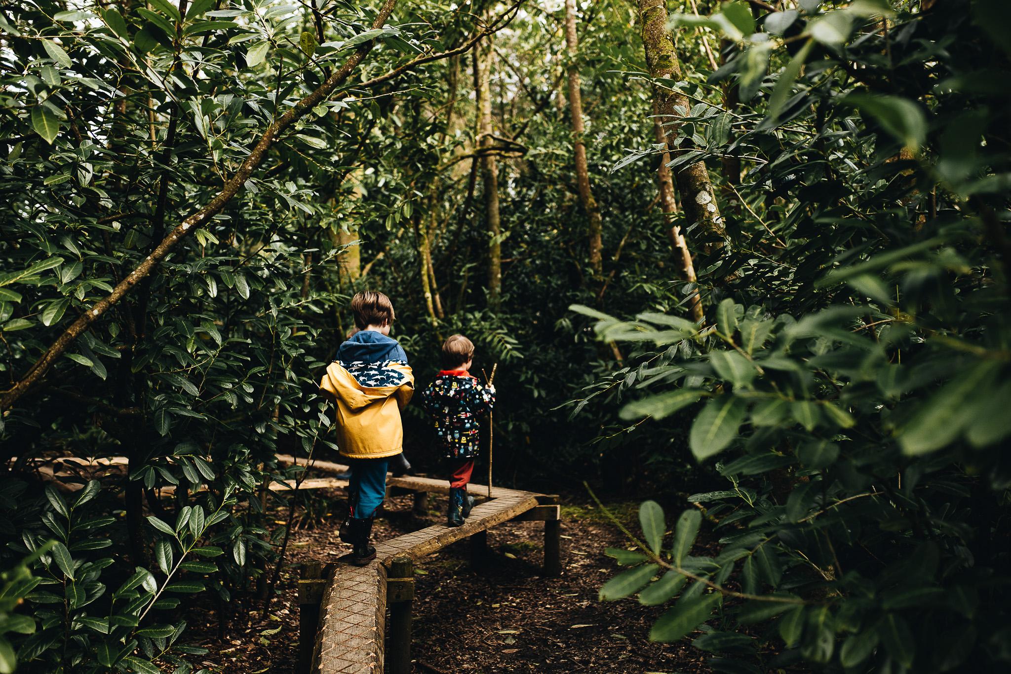 "The boardwalk through the ""jungle."""