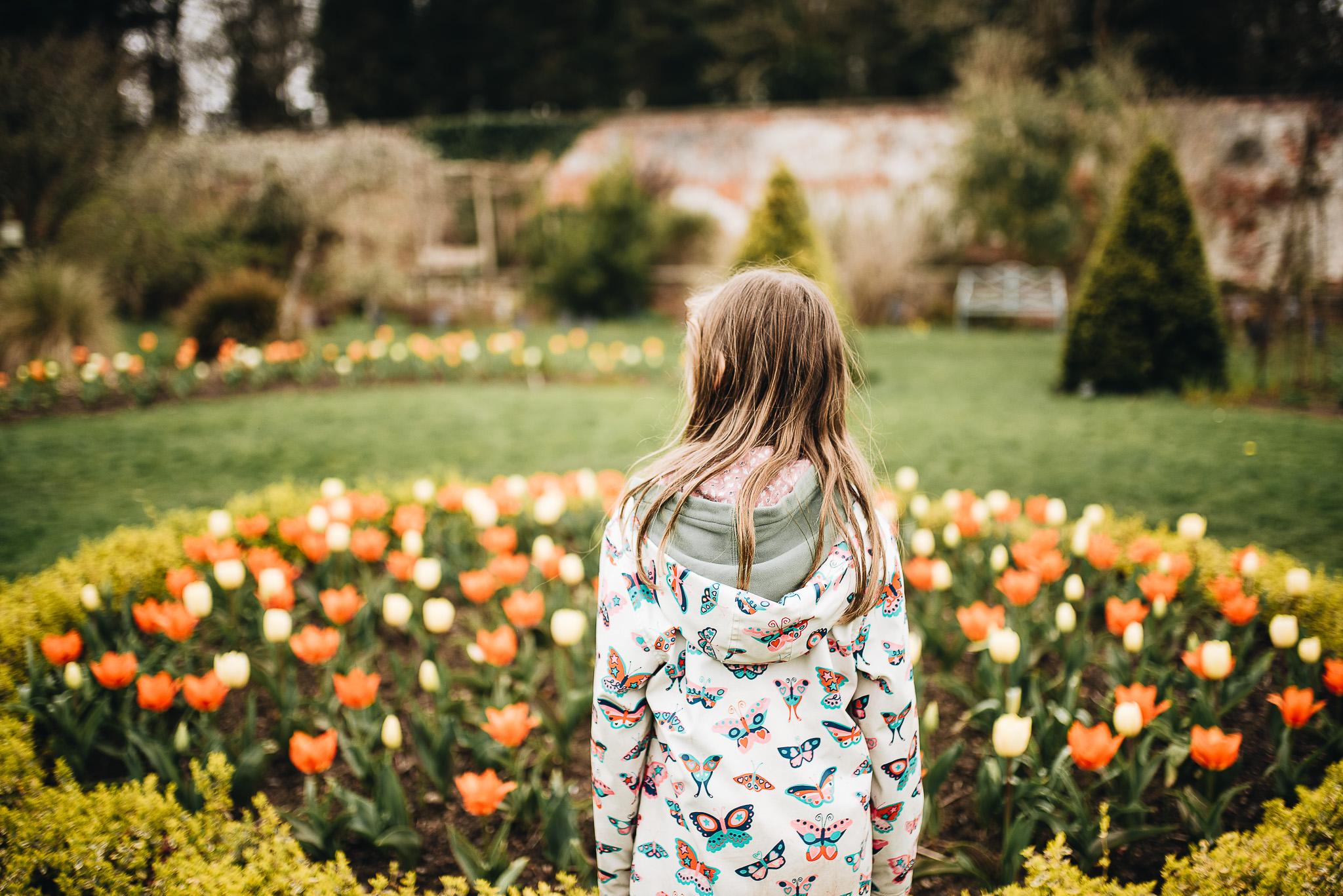 In the Walled Garden