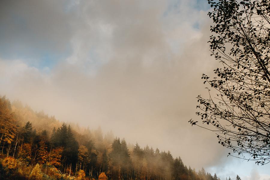 Our Scotland Adventure - Loch Goilhead Lodges - Hoseasons - Blog