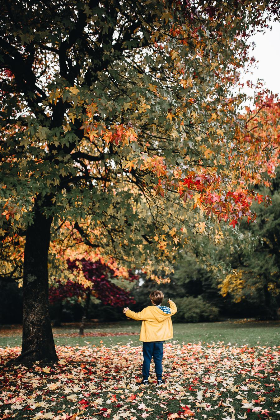 OurBeautifulAdventure-GettingOutdoorsinWales-October-websize-0193.jpg