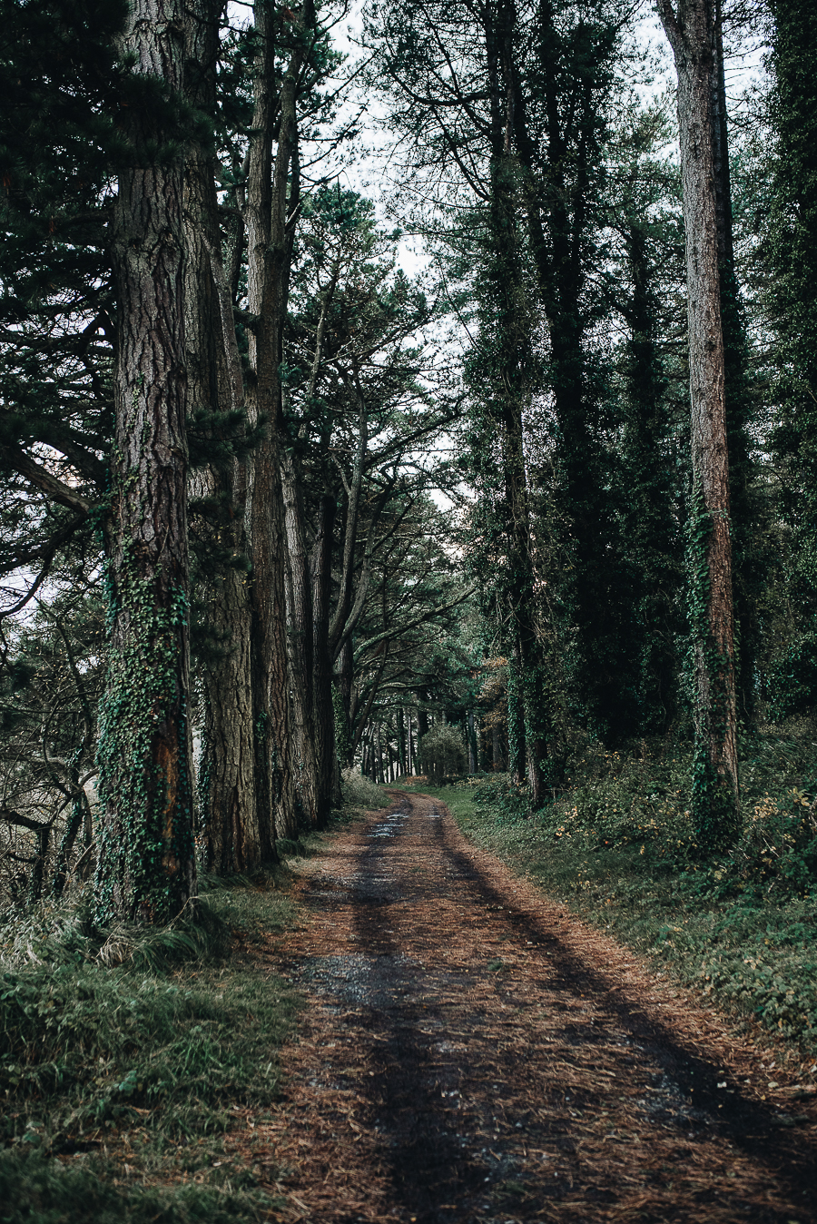 Getting outdoors in Wales - November Edition - Our Beautiful Adventure Photography