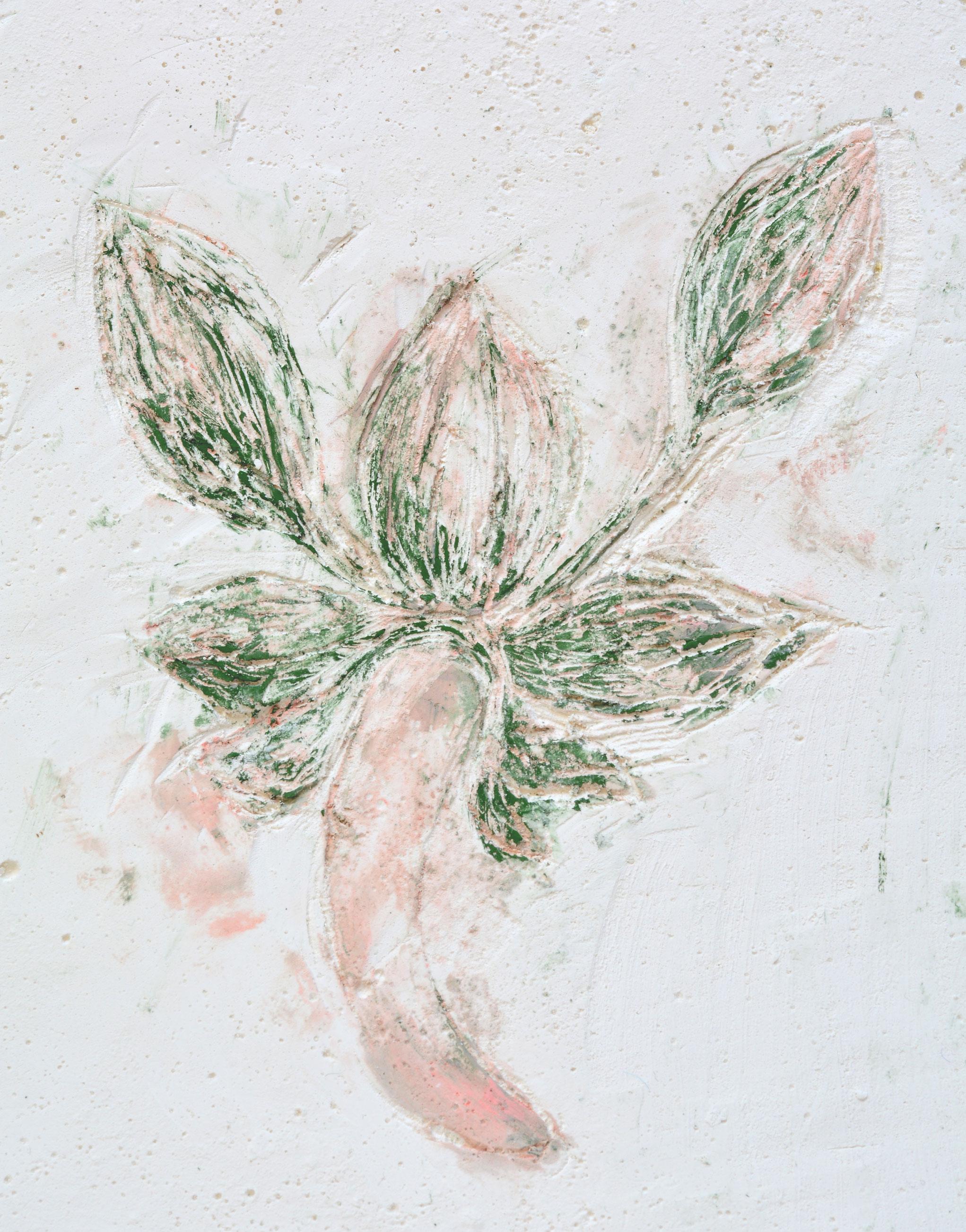 Solanne_Bernard-Shy_Blooms2-5-2-low.jpg