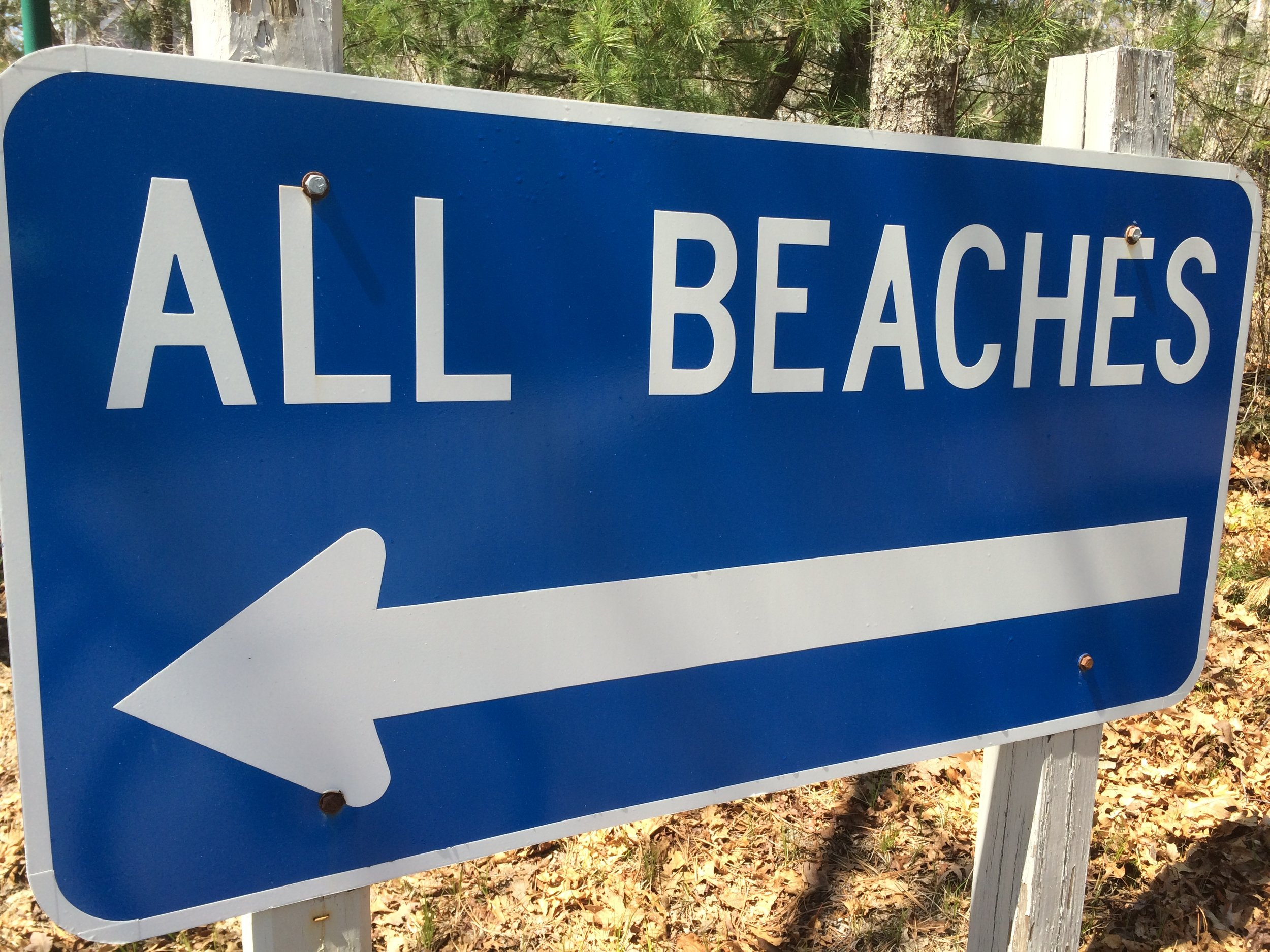 Before you hit the beach go on a Save the Village tour!