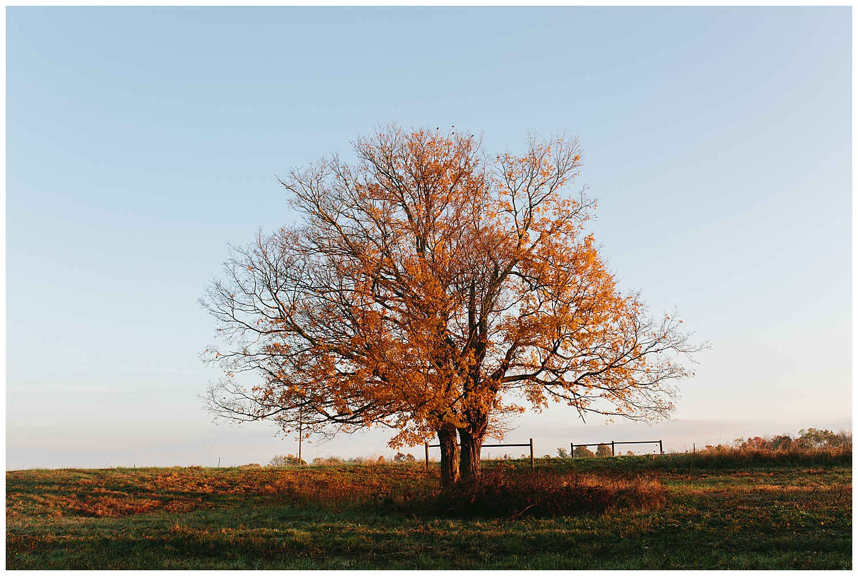 trent.and.kendra.photography.autumn.kentucky.foxhollow-44.jpg