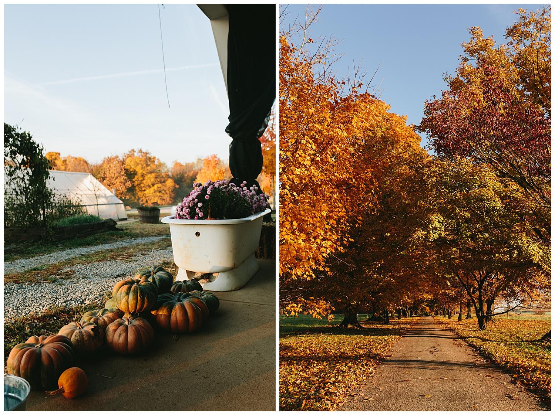trent.and.kendra.photography.autumn.kentucky.foxhollow-52.jpg
