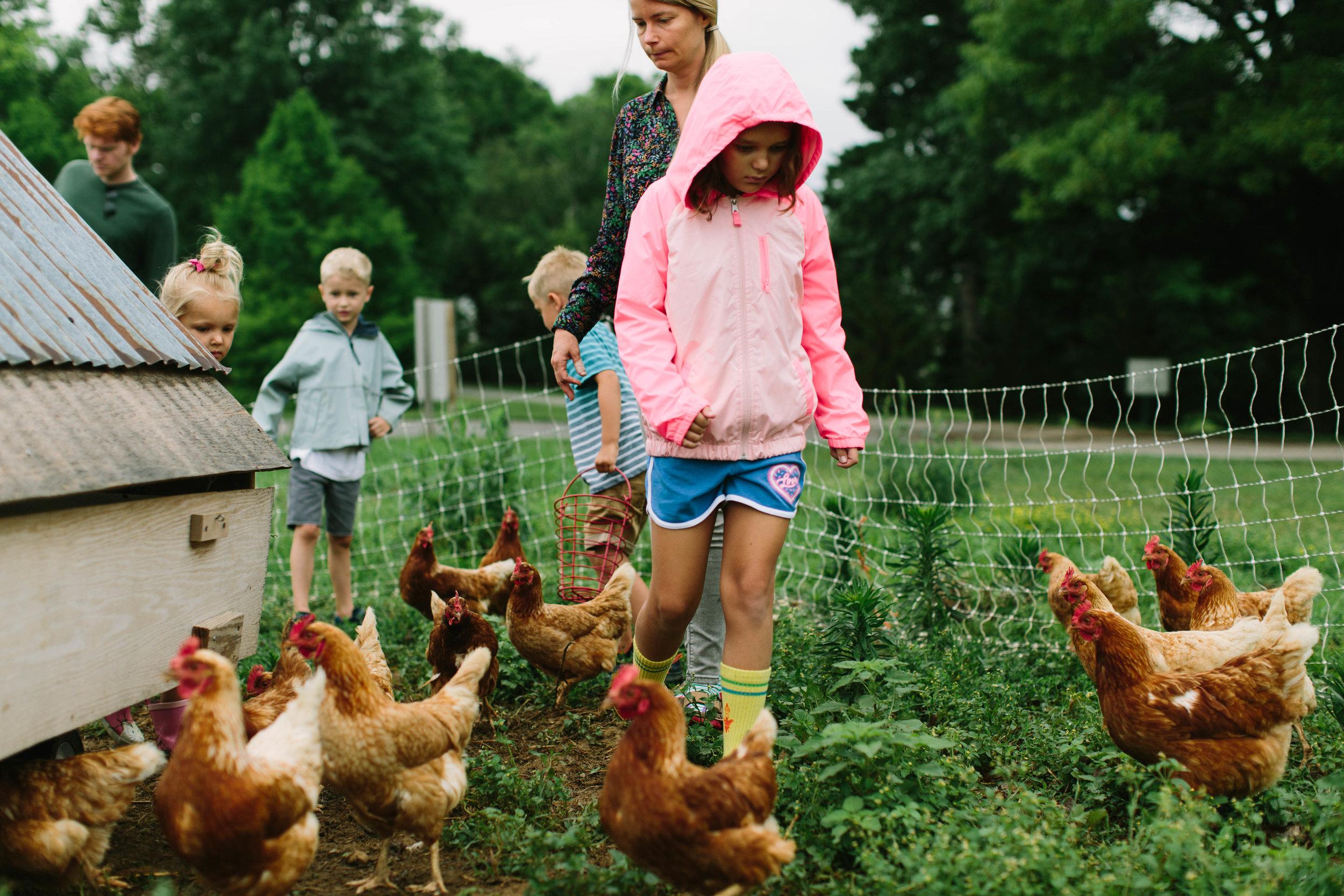 foxhollow.farms.kentucky-49.jpg