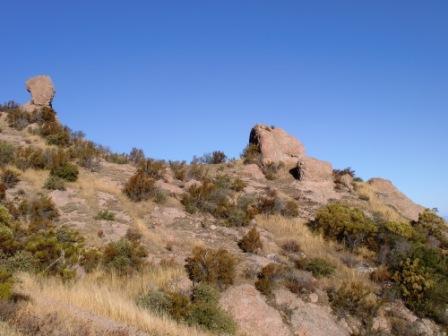 Near the top of Boney Peak.