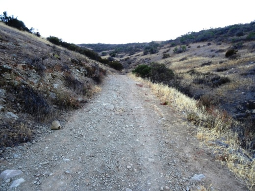 Wide trail. Be aware that private residences are adjacent to the first portion of the trail.