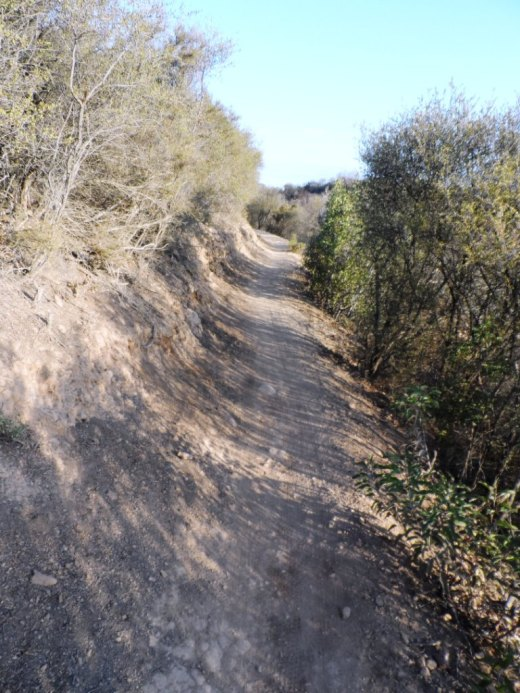 A photo of a section of the Los Robles Trail West up Space Mountain.