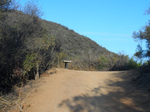 """Bench on the trail at the top of """"Space Mountain"""" on the Los Robles Trail."""