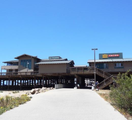 The bike path goes under the Ventura Pier.