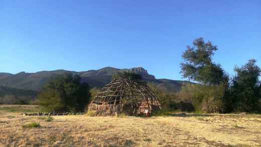 There is a Chumash house, or 'ap, on the grounds of the Center. It is made with willow trees and tule.