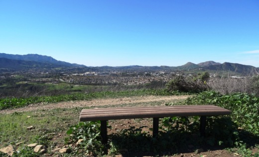 You may come across this bench at the peak of the southern section of Lynnmere Trail.