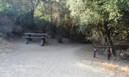 Picnic bench at juncture of fire road and narrower, steeper Los Robles Trail East.