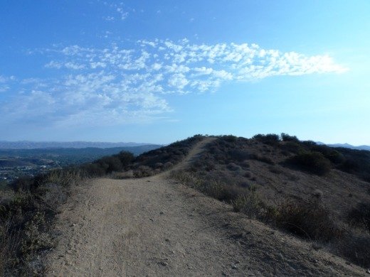 Los Robles Trail East near hilltop viewpoint with bench.