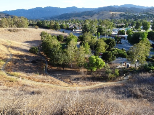 A view of the Bark Park from the trail above.