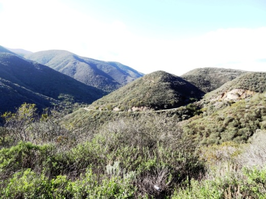 Views from the benches looking down Big Sycamore Canyon. Photo taken a few months before the Springs Fire of 2013.