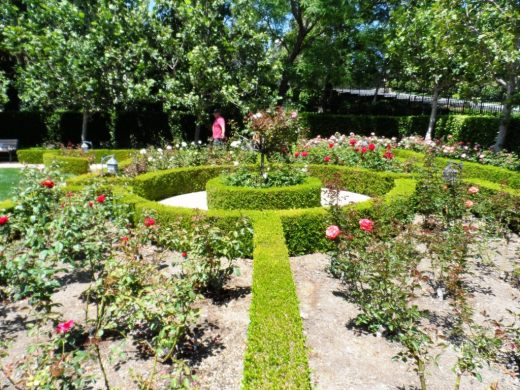 I never promised you a rose garden...but here's a beautiful one to check out!