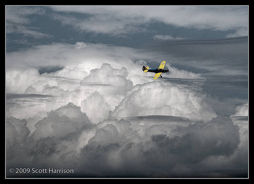 Wings_ScottH_5(flying).jpg
