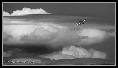 Wings_ScottH_7.jpg