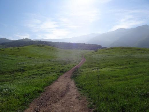 Satwiwa Loop Trail section that takes you diagonally through the meadow. Seen here when it is nice an green.
