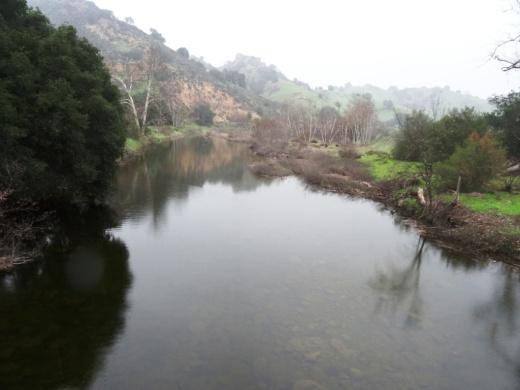 Malibu Creek free flowing after some decent winter rainstorms