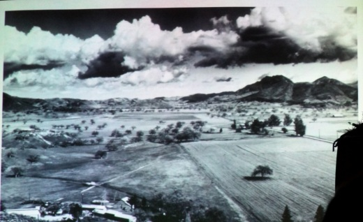 Photo courtesy of Ed Lawrence and Thousand Oaks Library Foundation