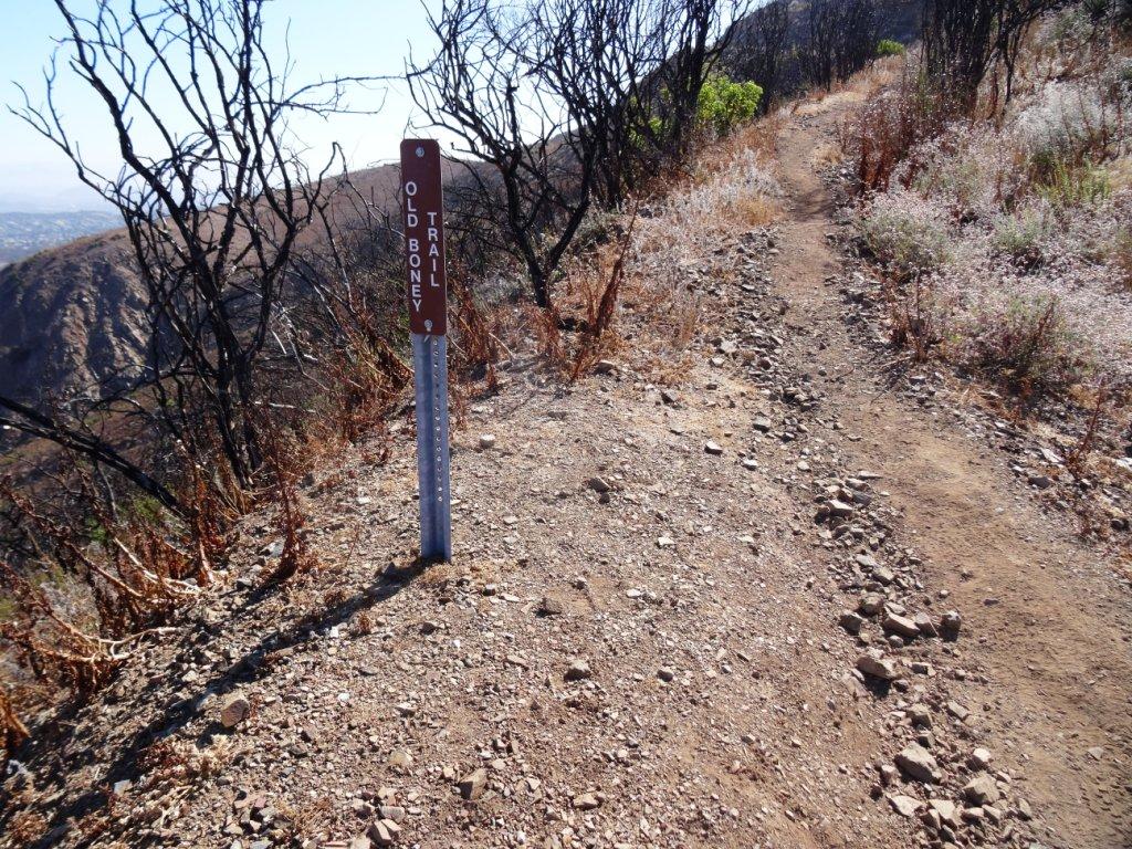 Old Boney Trail Sign