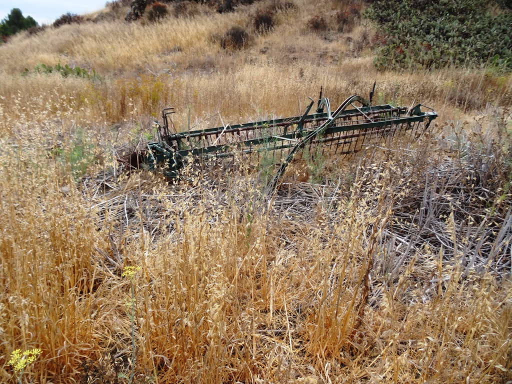 Some old farming equipment on the side of the Lower Santa Rosa Trail.