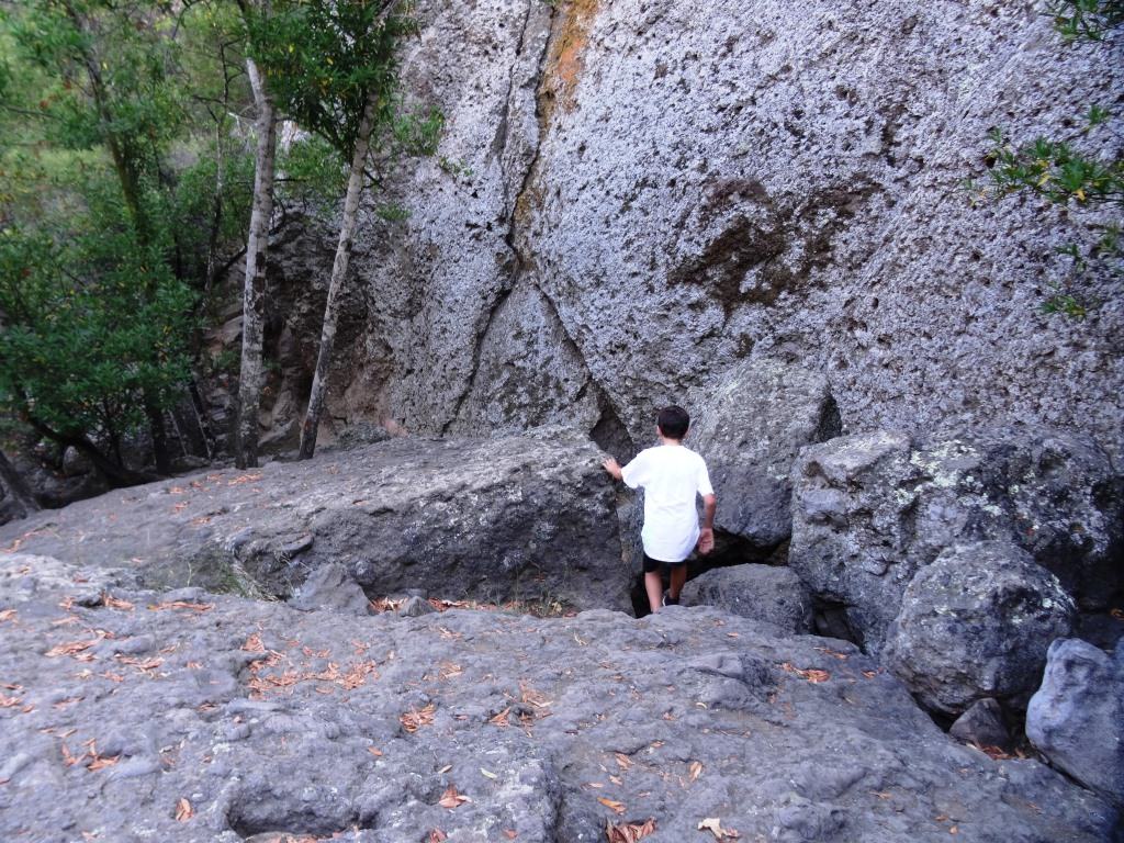 Not exactly easy but do-able. After the boulders there's a dirt path that I slipped on and flew nearly parallel to the ground, landing my lower back on a tree root. I survived but my utterances had to be bleeped out by censors.