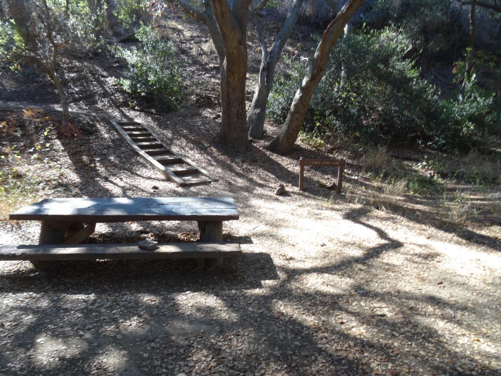 Eagle Point Trail Wildwood Park