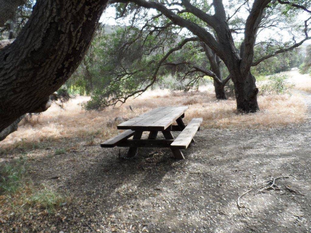 Shaded picnic area off the Hawk Canyon Trail from the Conejo Canyons Bridge