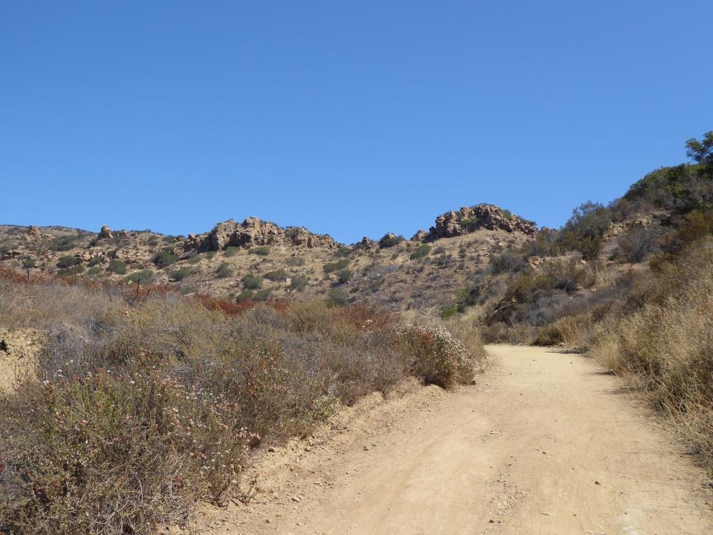 The Palo Comado Canyon Trail is fire road, so it is nice and wide.