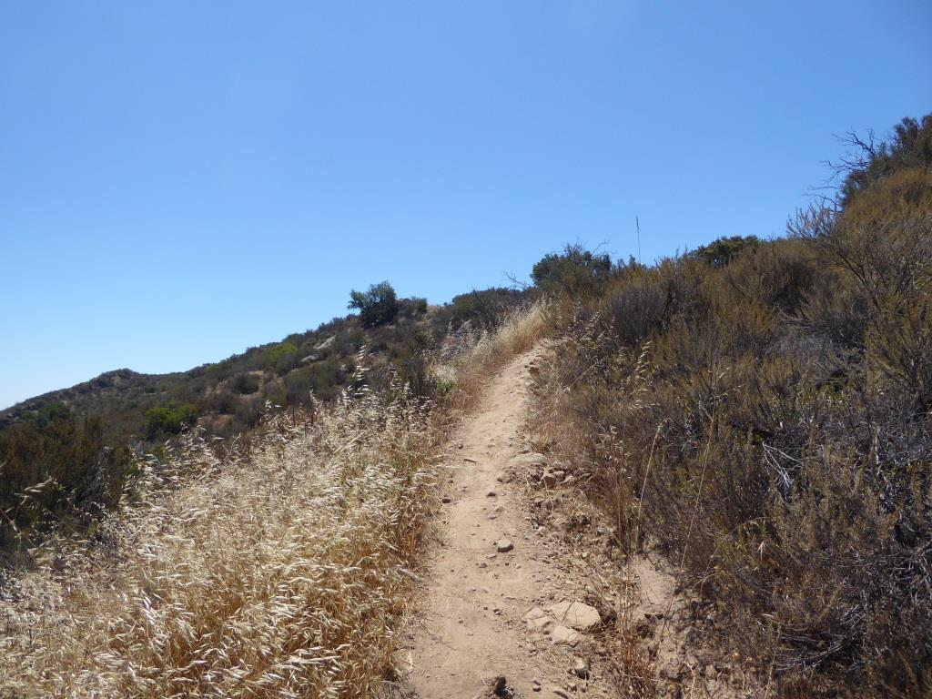 The trails get narrower and a bit more technical as you head your way to the peak. Wear good shoes.